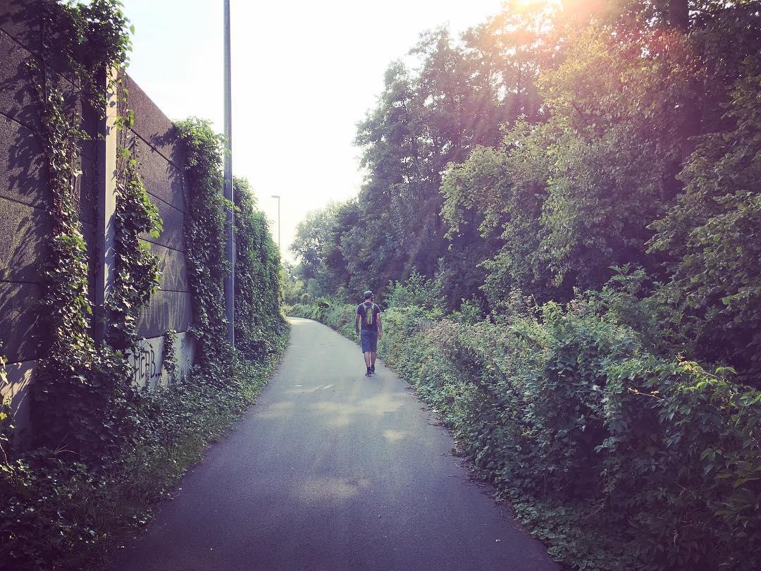 wandelpad richting natuurpark Overmeers